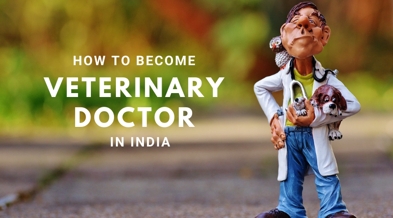Veterinary Science: How To Become a Veterinary Doctor in India